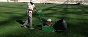 DLF Group: Grass Seed Supplier for World Cup 2014 in Brazil